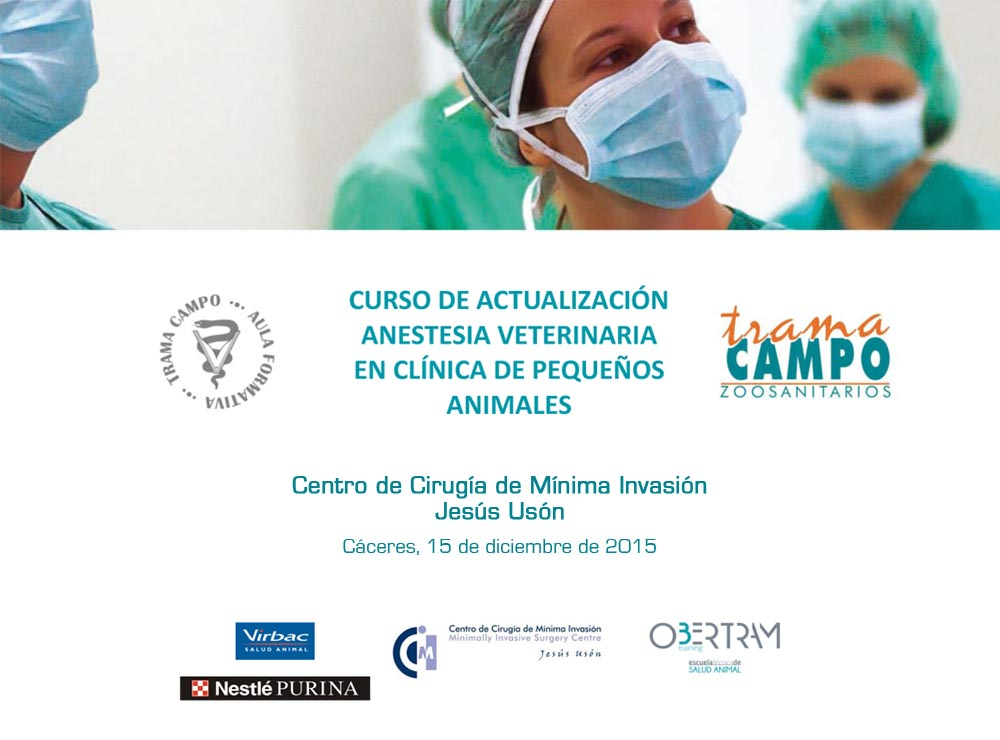 Curso de Actualización Anestesia Veterinaria en Clínica de Pequeños Animales