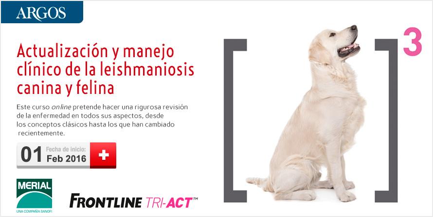 """Curso on-line """"Actualización y manejo clínico de la leishmaniosis canina y felina"""""""